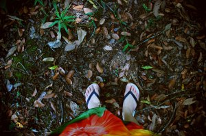 auto-retrato/juquitiba/sp/brasil/2009/semterritorio