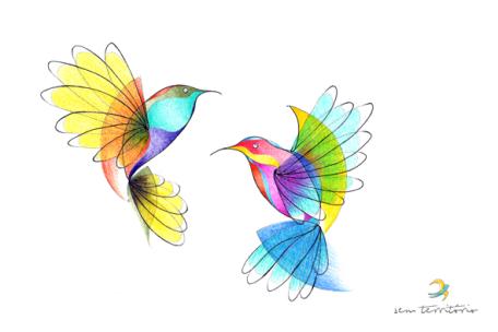 beija-flores/nanquim e lápis de cor em papel montval 300gm/21x30cm/tatauagem para pedrinho/original indisponível/semterritorio