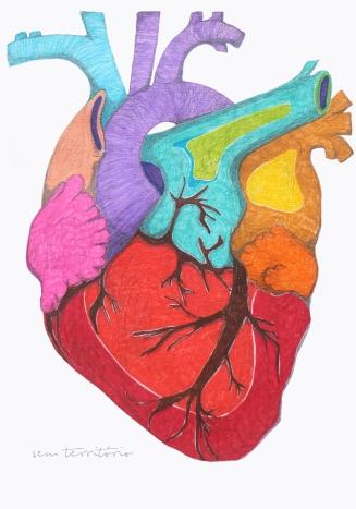 coração colorido/ caneta stabilo em sketchbook/ original indisponível/ semterritorio