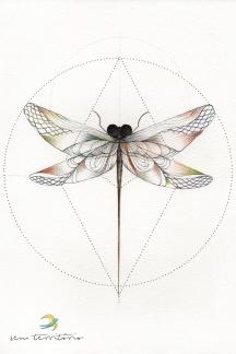 libélula/ nanquim e lápis de cor ponta tricolor em papel montval 300gm/ 21x30cm/ original vendido/ sem territorio