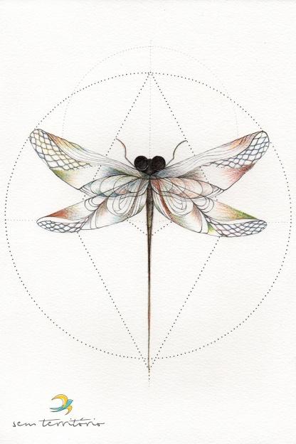 libelula---semterritorio