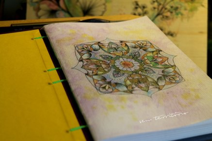 mandala em sketchbook miolito/ nanquim, aquarela e lápis tricolor/ semterritorio