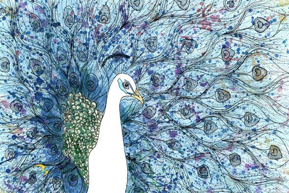 pavão/ nanquim, aquarelae maquiagem em papel canson 300gm/ 30x42cm/ original disponível para venda/ semterritorio