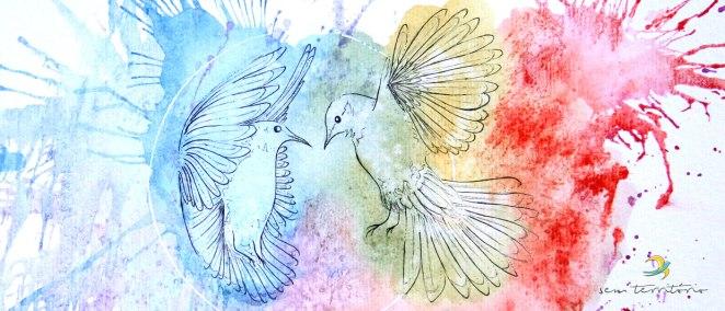 sem-territorio---pombos