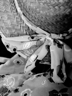 lariodatartaruga-16---semterritorio