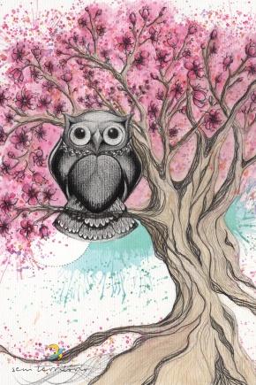 Coruja em cerejeira