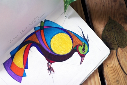 gralha-colorida